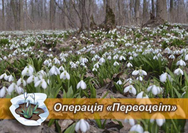 В області старувала операція «ПЕРВОЦВІТ – 2019»